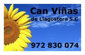 Can Viñas